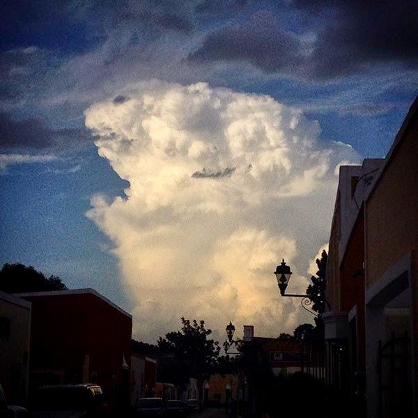 El cielo de Valladolid nos regala un oso en una nube blanca y viendo al nuboso animal  pienso que no hay Inteligencia superior a  la de la Naturaleza, si los seres humanos  extinguen a los animales ella los crea de  nuevo en las nubes del cielo.