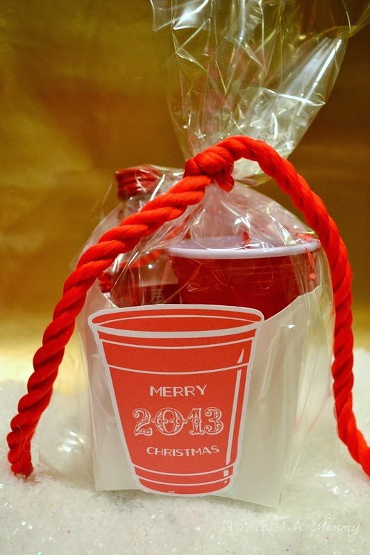 Red Cup Living gift ideas; shooter cup