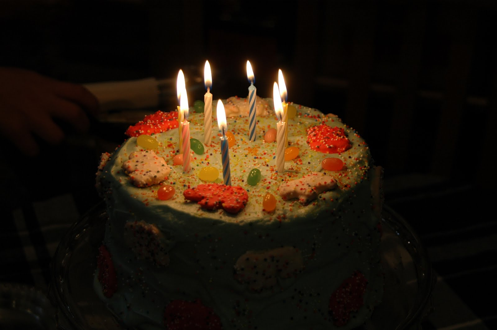 Cheesy Pennies My Kind Of Birthday Cake