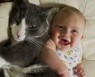 HOGAR: Cómo gatos y perros mejoran la salud de los bebés