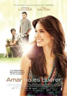 Ver Amar No Es Querer - 2011 Online