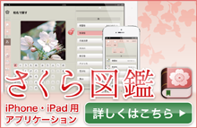 iPhone&#12539;iPad&#12300;&#12301;