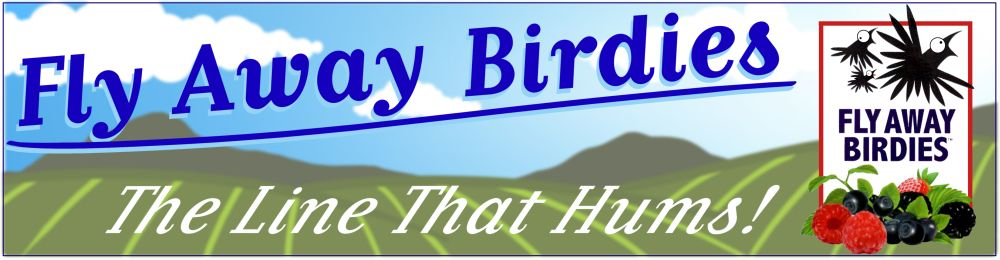 Fly Away Birdies
