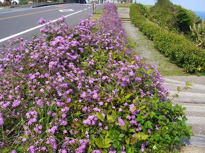 宮崎県・堀切峠 道の駅フェニックス