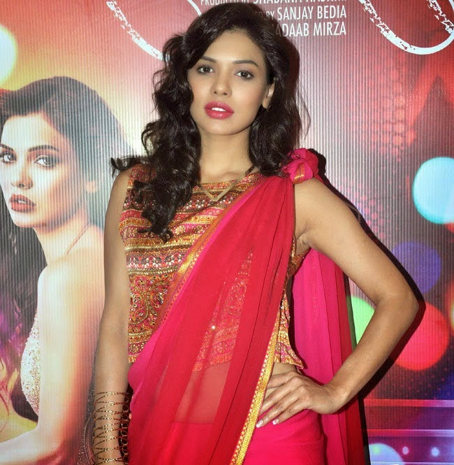 Sara Loren hot stills at barkhaa movie promotion