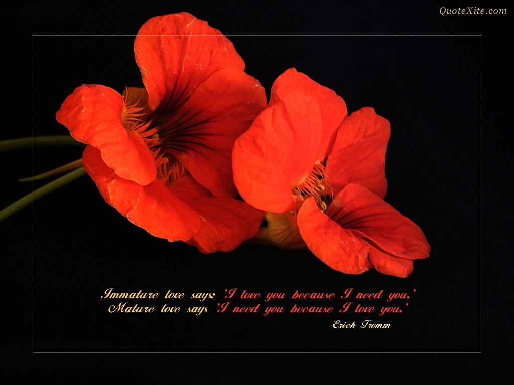 Love Quotes Wallpaper For Desktop : Love quotes wallpaper, love quotes wallpaper Amazing ...