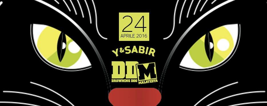 DDM + Y&SABIR