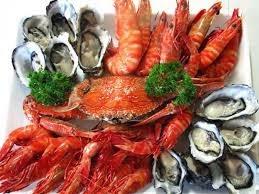peluang usaha seafood