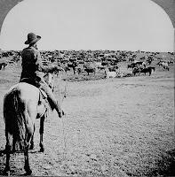 cowboy in 1902