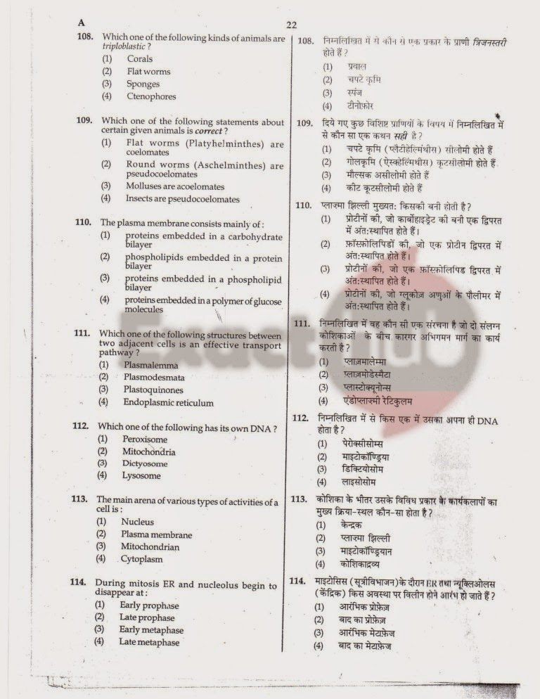AIPMT 2010 Exam Question Paper Page 22