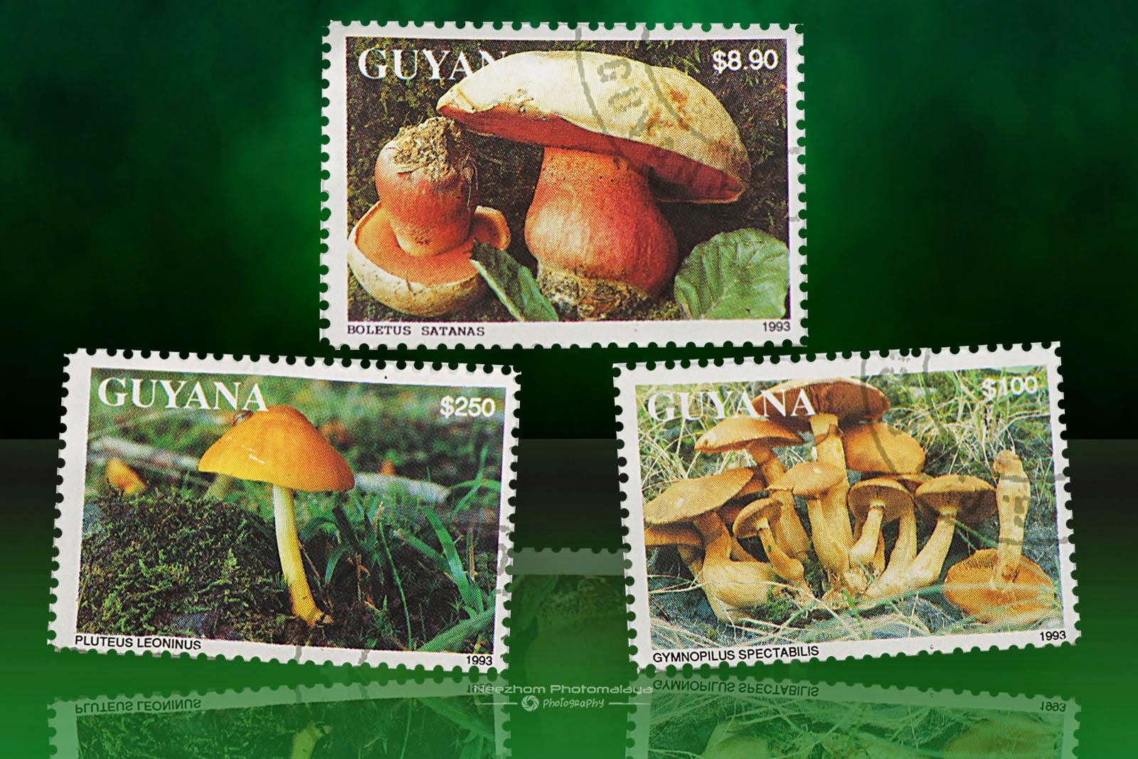 Guyana mushrooms stamps 1993