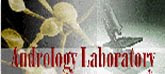 Laboratory Andrology