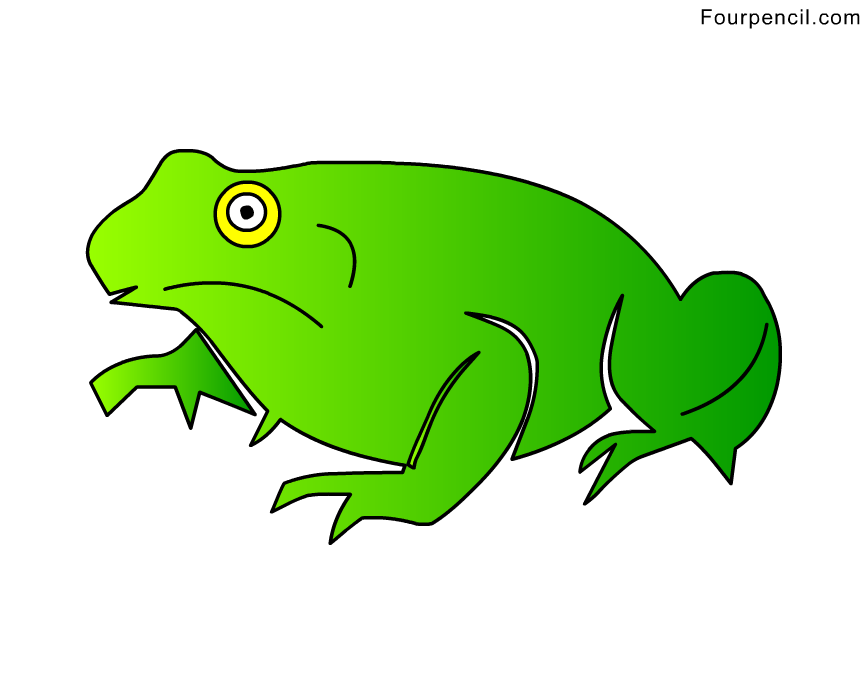 How to draw a toad step by step for kids
