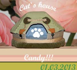 Кошачья конфета стала МОЕЙ!!!