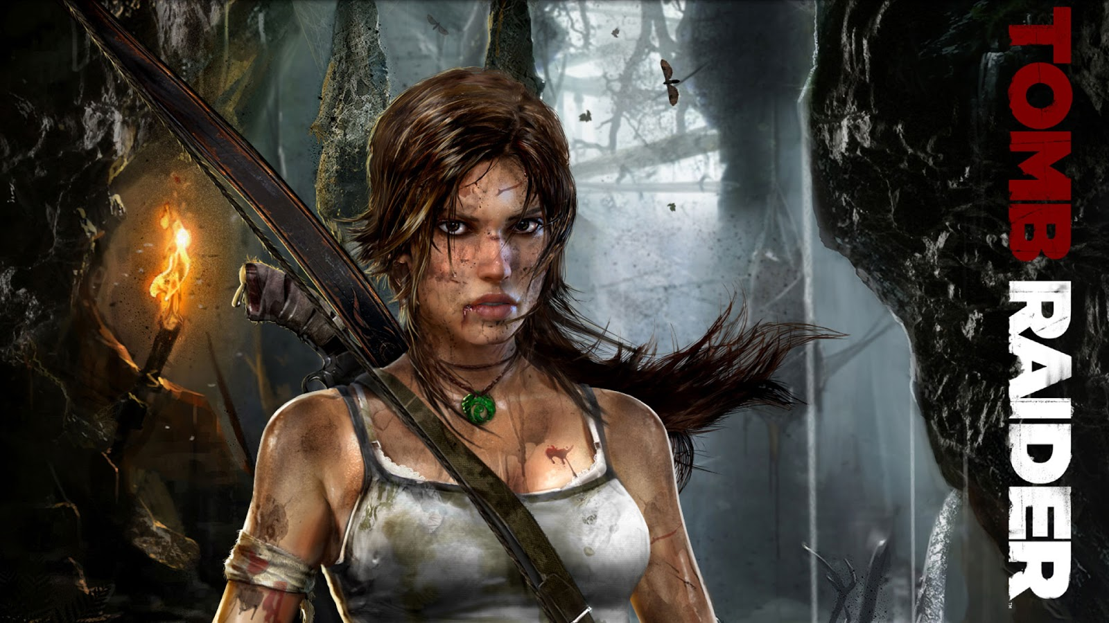 Tomb Raider HD & Widescreen Wallpaper 0.870158242792427