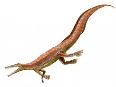 reptiles marinos del permico Mesosaurus