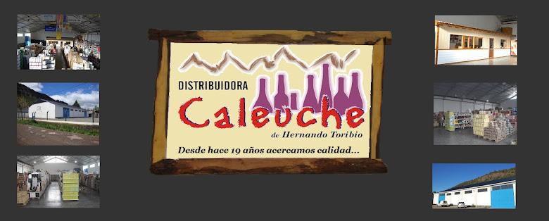Distribuidora CALEUCHE