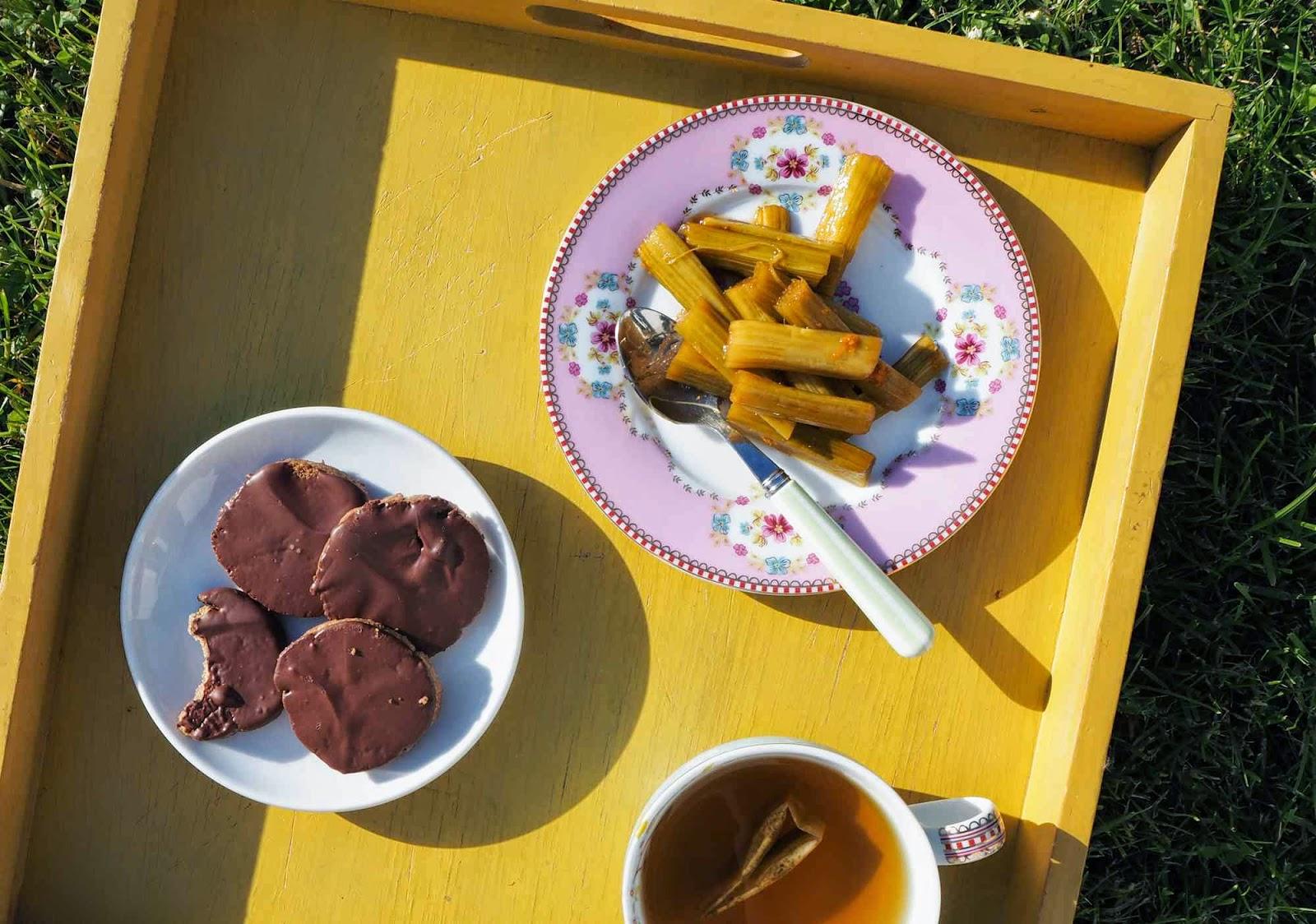 S cotine fait sa maligne les go ters du dimanche granola maison et rhubarbe basse temp rature - Maison maligne ...