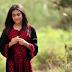 تحميل اغنية بنت صغيرة فلسطينية - أمينة كرم mp3 + الكلمات مكتوبة