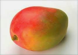 Maviamoa comment faire pousser un manguier ou avoir une plante verte - Faire pousser une mangue ...