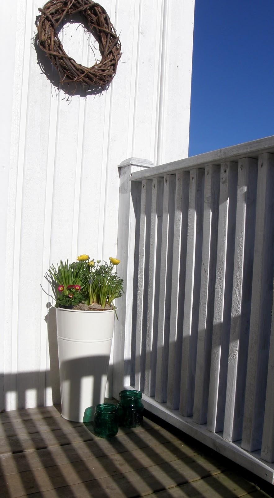 Et hageprosjekt: februar 2012