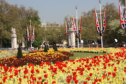 Buckingham Palace in Full Bloom