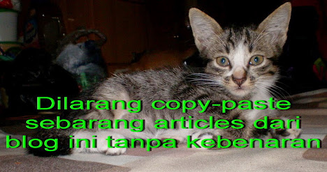 Larangan copy-paste