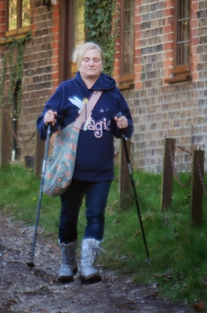 madmumof7 walking with alpine walking sticks