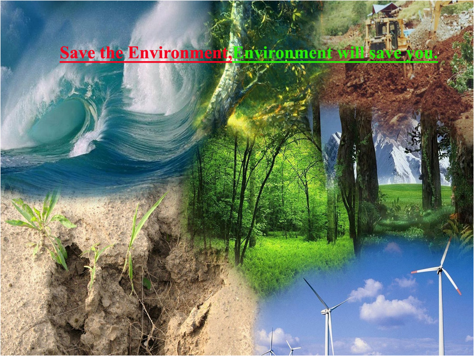 essay on our environment in india Environment essay 5 (300 words) an environment is gifted by the nature to nourish the life on the earth everything which we use to continue our lives comes under the environment such as water, air, sunlight, land, plants, animals, forests and other natural things.