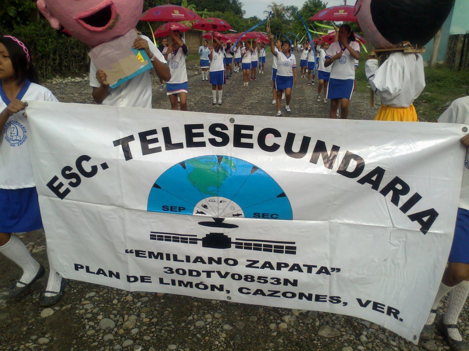 TELESECUNDARIAS ZONA 12 POZA RICA SUR: noviembre 2011