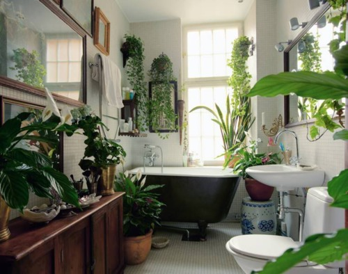 pampoenspook my dream bathden bathroom garden