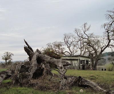 Abandoned property in Templeton, CA. © B. Radisavljevic