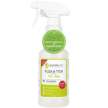 Natural Flea & Tick spray.. IT WORKS, too !