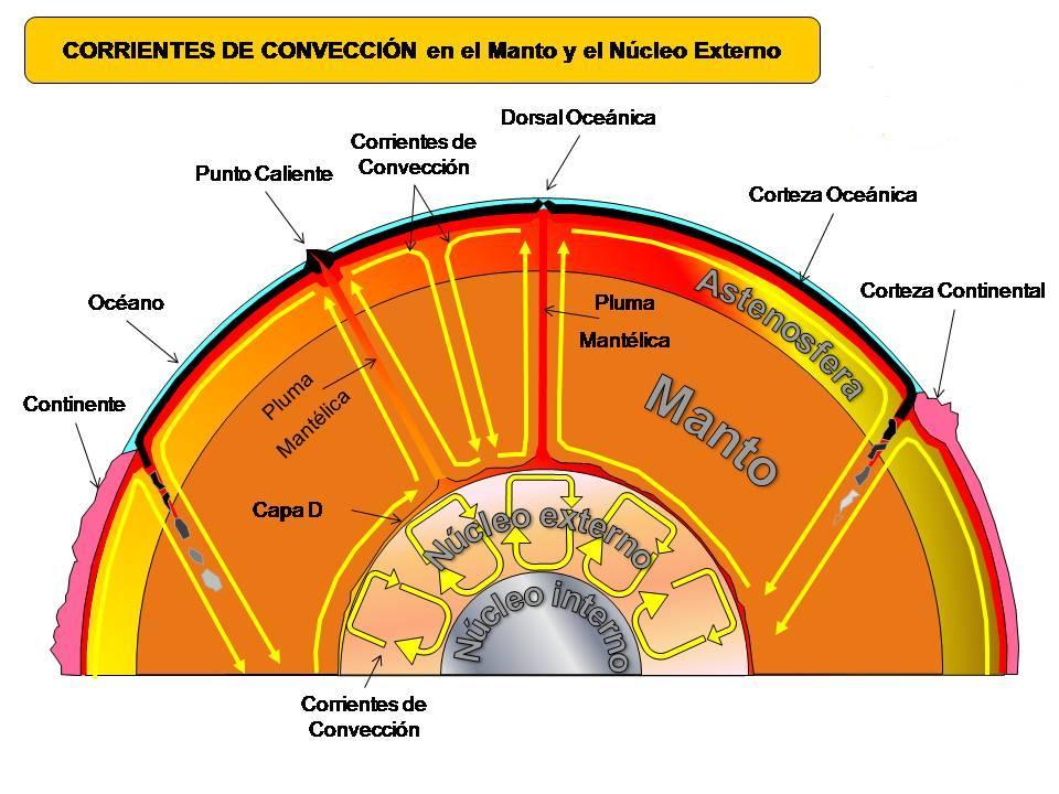 apa cribsheet Apa crib sheet httpwwwwoosteredupsychologyapa cribhtml this site provides from als 402 at cornell university.