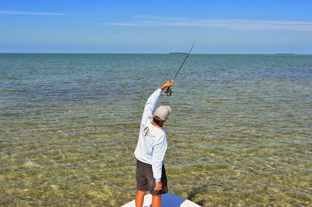 The pine island angler key west bonefishing with capt for Bone fishing key west