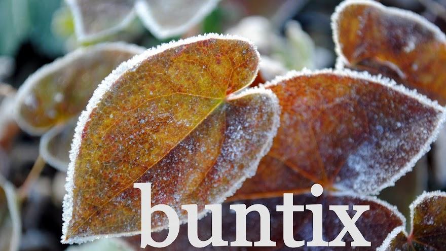 buntix