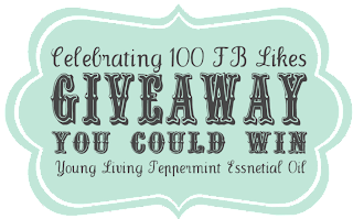 http://blissfulkeeperathome.com/2013/11/celebrating-100-facebook-likes-giveaway/