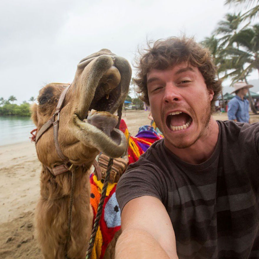 This Man Mastered The Art Of Animal Selfies! One With Parrot Is Priceless!