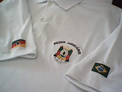 CAMISA POLO PIQUET