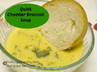TIP GARDEN: Fast & Easy Cheddar Broccoli Soup