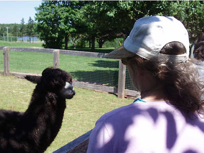 One last picture of me staring down the world's ugliest Llama. That is all.