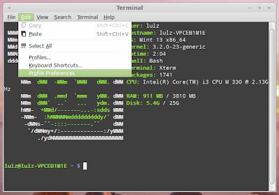 edit terminal size linux mint
