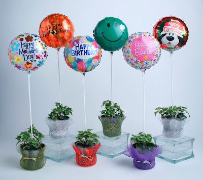 Balloons on Sticks Sticks Are Balloon Holders