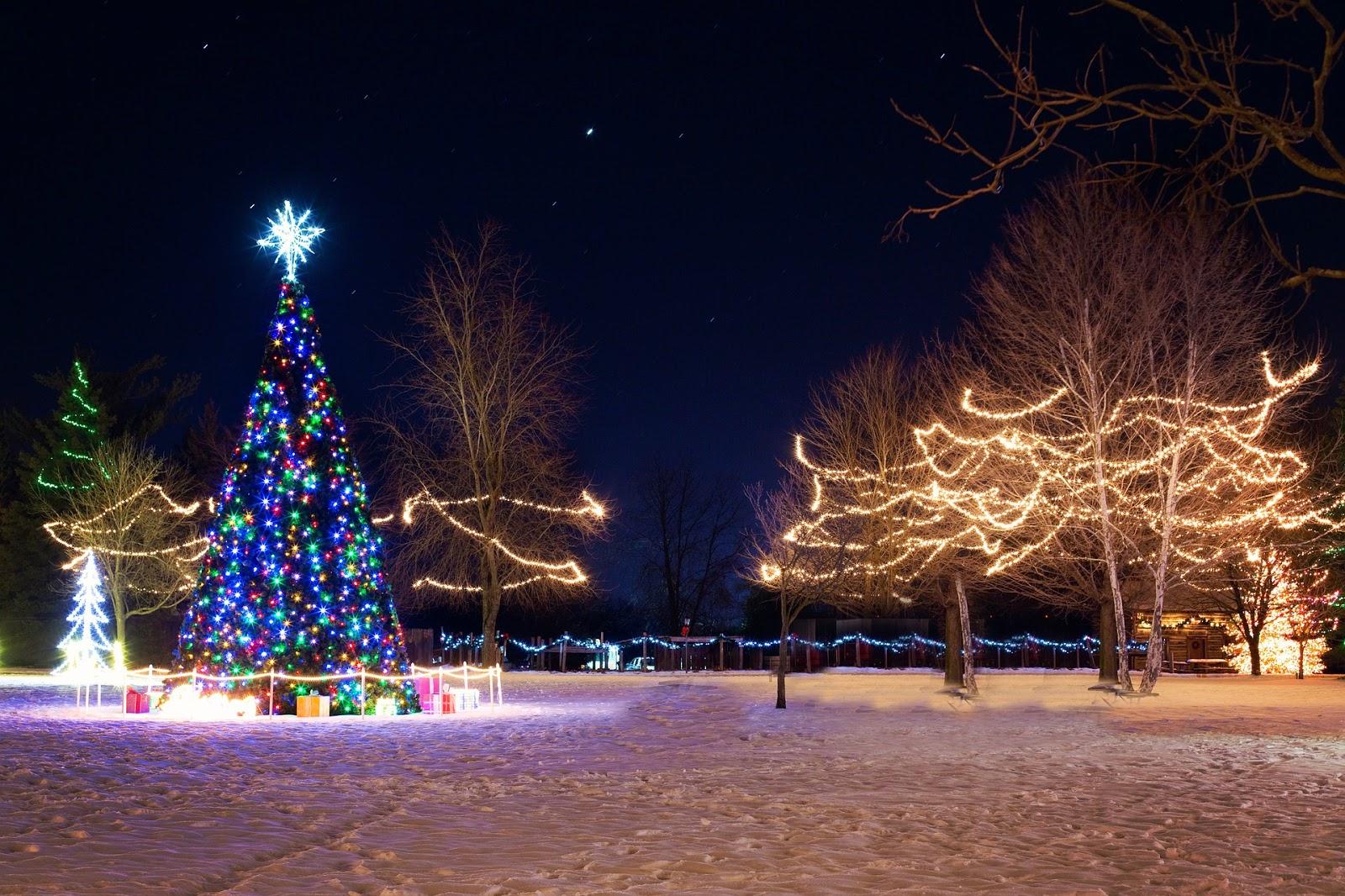 Tekijänoikeusvapaita valokuvia: Ilmaisia joulukuvia