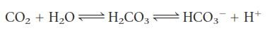 reaksi karbondioksida dengan air