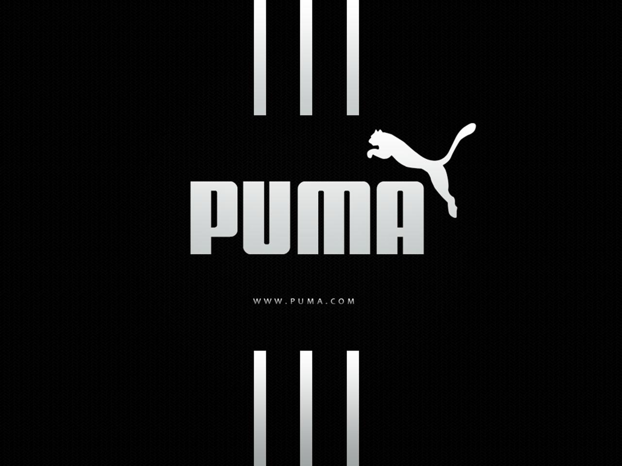 the phone will boot up by a black puma logo: xperianeoldev.blogspot.com/2013/05/puma-black-bootanimation.html