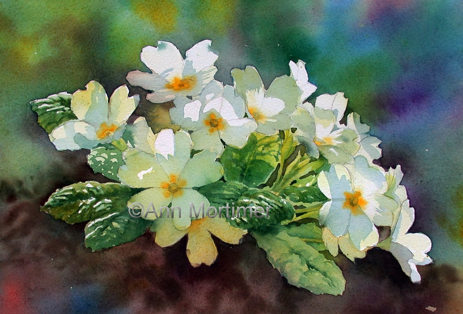 Anns watercolour studio painting shadows on white flowers my website mightylinksfo