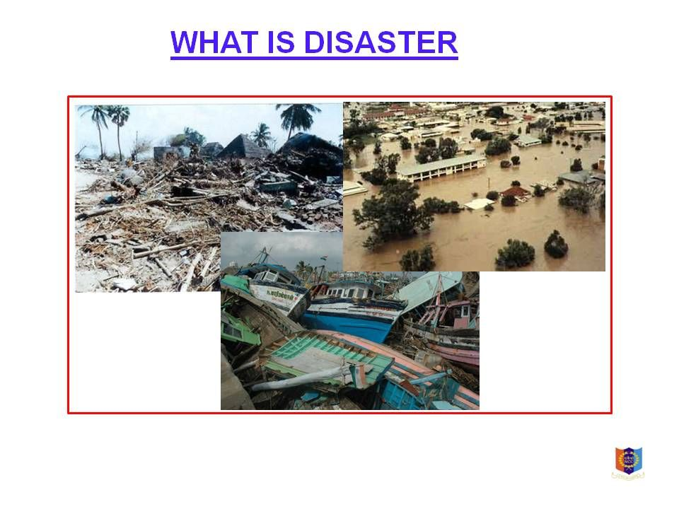 disater management Effective disaster management strategies in the 21st century developing the tools, processes and best practices to meet the demands of the increasing number of disasters.