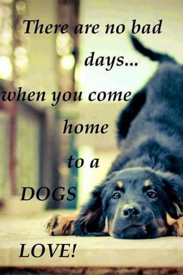 There are no bad days... when you come home to a DOGS LOVE.