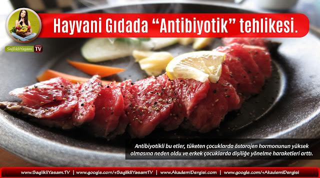 Sağlıklı beslenme, Sağlıklı Yaşam, Antibiyotikler, et ürünleri, gıda sağlığı, hormonlar, organik gıda, hayvani gıdalar, GDO,